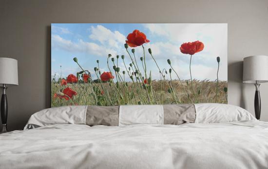 Cuadros flores floral campo de amapolas rojas - Cabeceros de cama con fotos ...